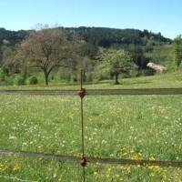 Kit clôture électronique 1 hectare clé en main