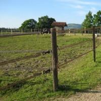La clôture électrique de qualité - depuis 1985 - Equit'élec